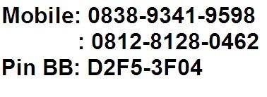 Nomor telp jual container bekas